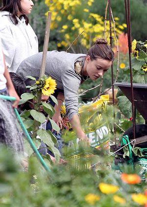 olivia wilde sourcewatch - Wilde Garden