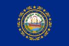 New Hampshire state flag.png
